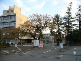 Kochi_University
