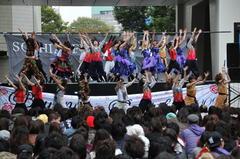 http://www.sophia.ac.jp/jpn/studentlife/kagai/kagai_news/sophiafes/sophiafestival