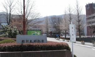 tsuru-040408-a