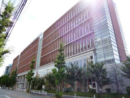 偏差 駒澤 値 大学